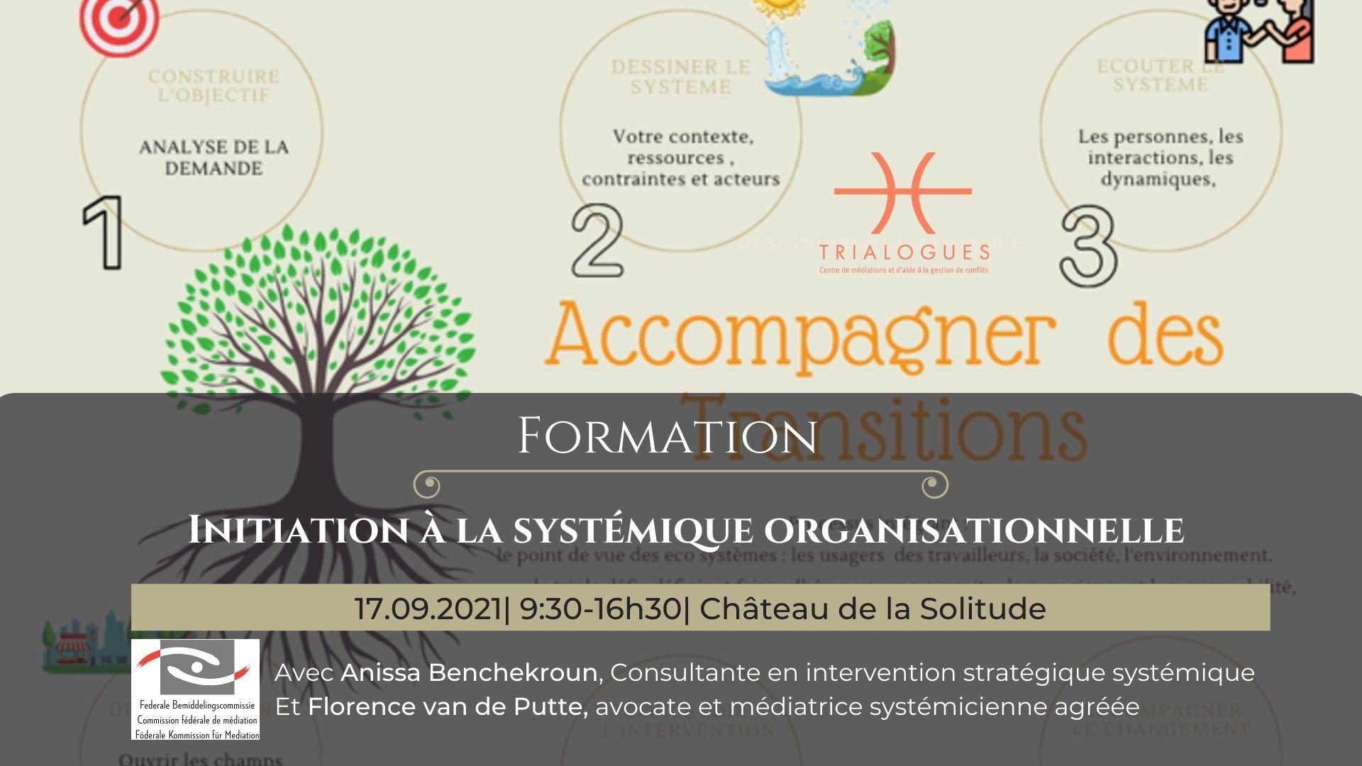 Initiation à la systémique organisationnelle
